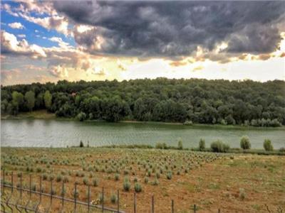 Teren zona Lebada cu acces la lac